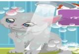 لعبة تنظيف القطط المتسخة فلاش  2017