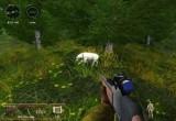 لعبة صيد الحيوانات المفترسة في الغابة