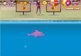 العاب عرض الدولفين الحقيقية في المسبح