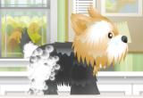 لعبة تنظيف الكلاب الأليفة 2017